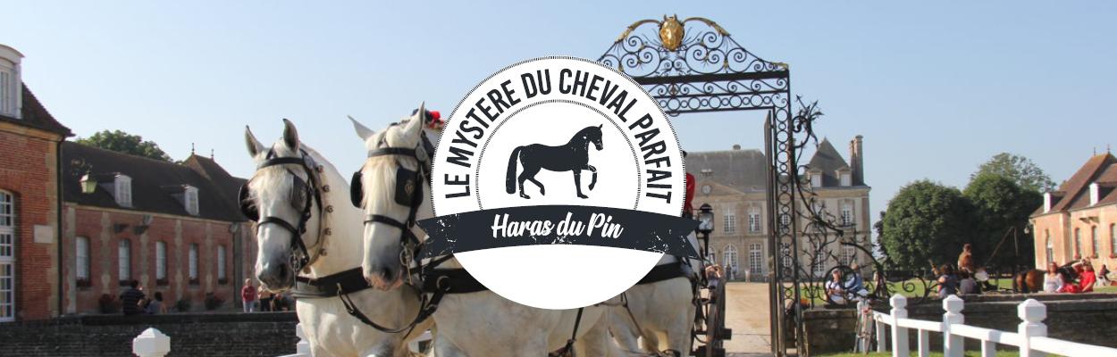 Haras du pin Le mystère du cheval parfait Team Building Chasse au trésor