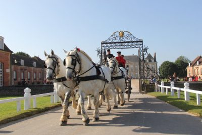 Haras-du-pin-caleche-chasse-au-tresor-team-building-incentive-